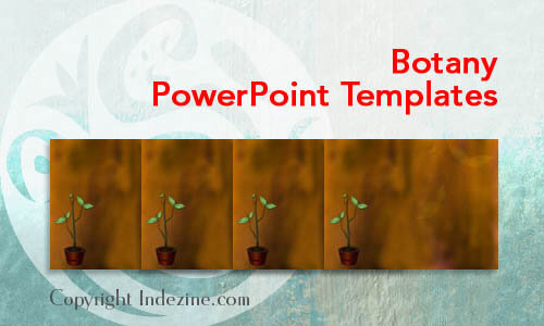 Botany  PowerPoint Templates