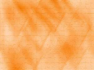 Orange Wall  PowerPoint Templates
